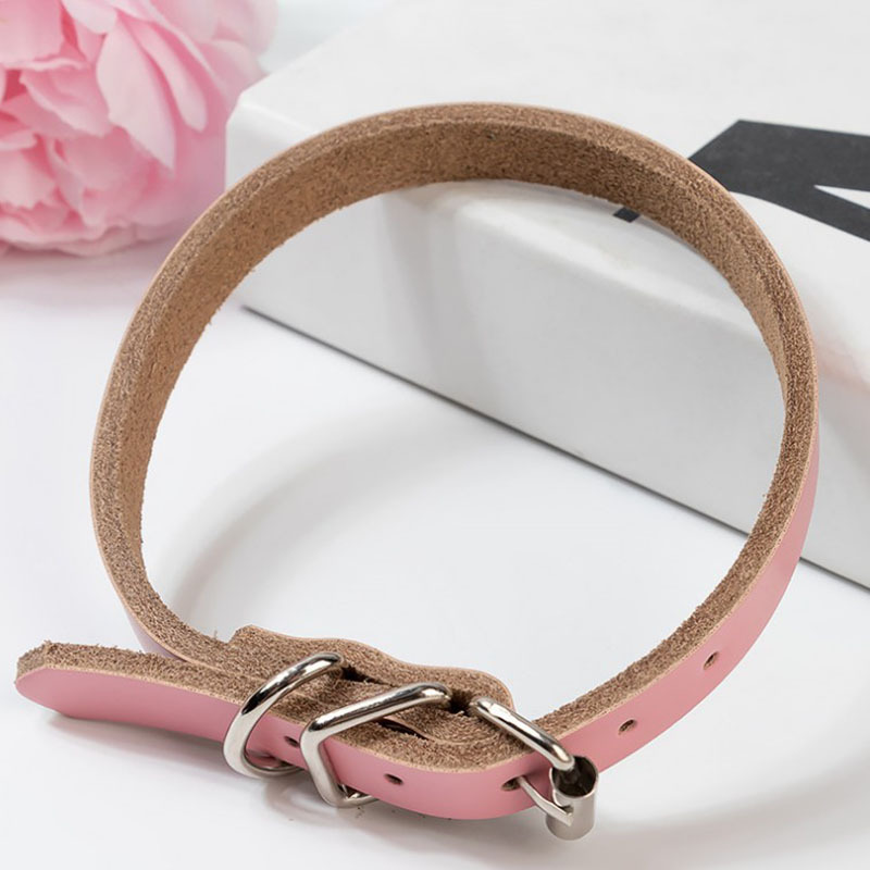 2019 New Style Pet Leather Goods Supplies Medium-small Dog Hand Holding Rope Dog Cat Collar Cowhide