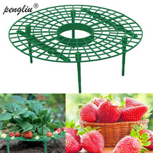Flower-Climbing Strawberry-Stand-Frame-Holder Planting-Rack Fruit-Support Balcony Vine-Pillar
