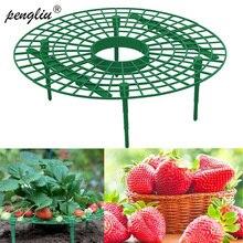 Soporte para plantas para balcón, soporte para plantas para fruta, flor, vid, trepadora, pilar de jardinería, 5/10/20 Uds.
