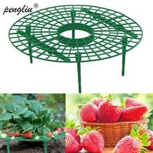 Support pour fraises, 5/10/20 pièces, pour balcon, plantation, fleurs, pilier descalade, Support de jardinage