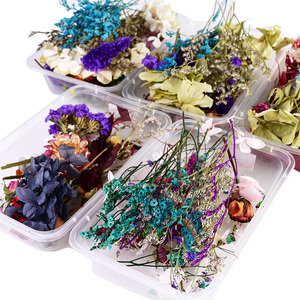 1 Box Natural Dried Flower Dry Plants Real Flowers Aromatherapy Candle Epoxy Resin Necklace Jewelry DIY Making Craft Accessories