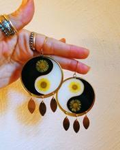 Preservado daisy yin yang brincos, botânico jóias, presente de aniversário para a mãe, flor brincos resina