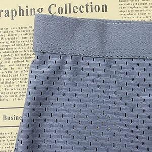 Image 5 - Mens shorts Ice Silk Cool Comfort Breathable underpants Mesh Long Leg Brief  Viscose Underwear for Men pants innerwear Gift