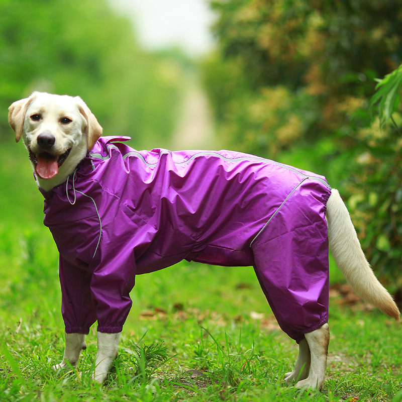 DogMEGA Reflective and Waterproof Raincoat for Dog