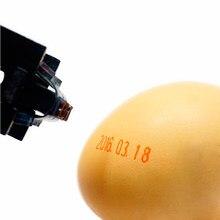 Carimbo portátil da data-data de 18x4mm para o carimbo do número da loja do supermercado do ovo do escritório do banco da escola