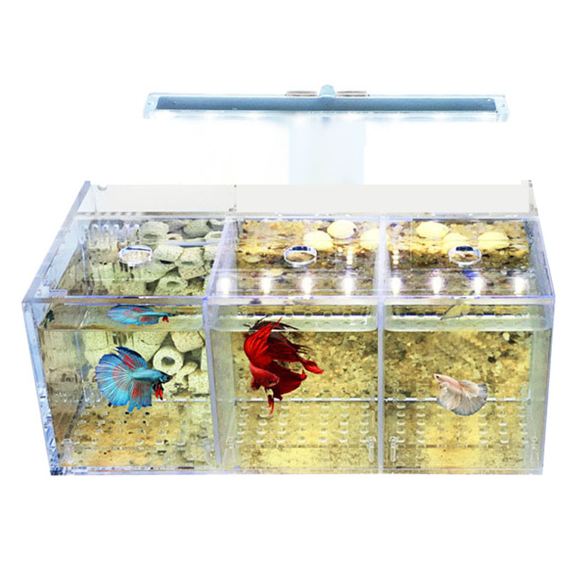 LED pour aquarium acrylique Betta aquarium ensemble Mini éclairage bureau pompe à eau filtres