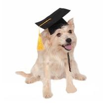 Pet Graduation Caps with Yellow Tassel Dog Cat Holiday Costume Halloween Dress up HY99