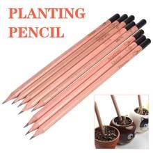 8 pçs idéia germinação lápis conjunto para crescer lápis mini diy desktop vasos de plantas presentes especiais lápis artístico
