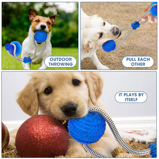Suction Cup Dog Push Toy with Ball Pet Tooth Cleaning Chewing Rubber 1