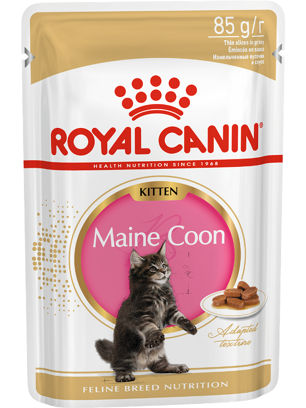 Cat Wet Food Royal Canin Maine Coon Kitten Spider For Maine Coon Cats (pieces In Sauce), Cat Food, For Cats, 24*85 Gr