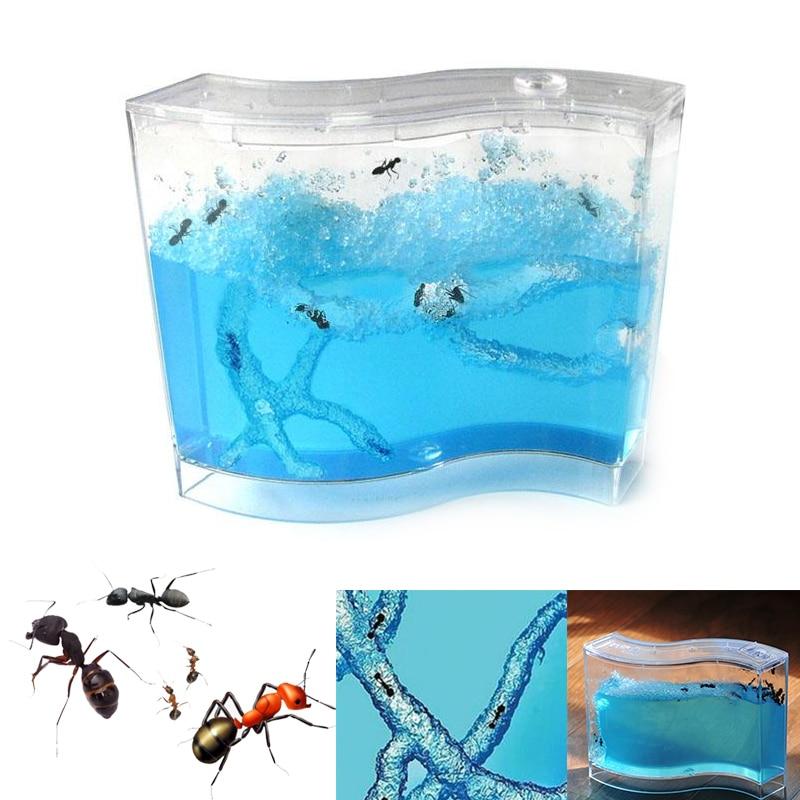 Pet Supplies House Pet Toy 73 * 32 * 78mm Educational Educational Educational Sand and Voucher Ant Gifts for Live Ants Colorful