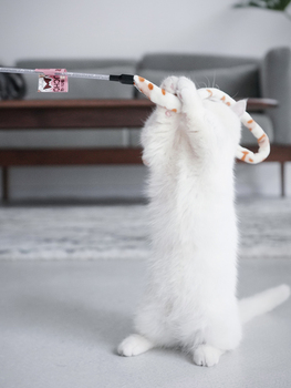 Teaser Stick for Cats. Interactive toy 3