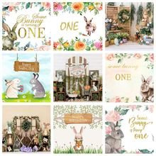 Mehofond кролик 1st День рождения фон для фотосъемки с изображением