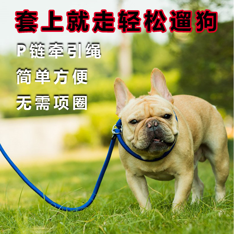Dog Pendant Word Hand Holding Rope Dog Small P Lanyard Sub-P Lanyard Dog Training Young Chain Dogs Chinlon Dog Teddy Retractable