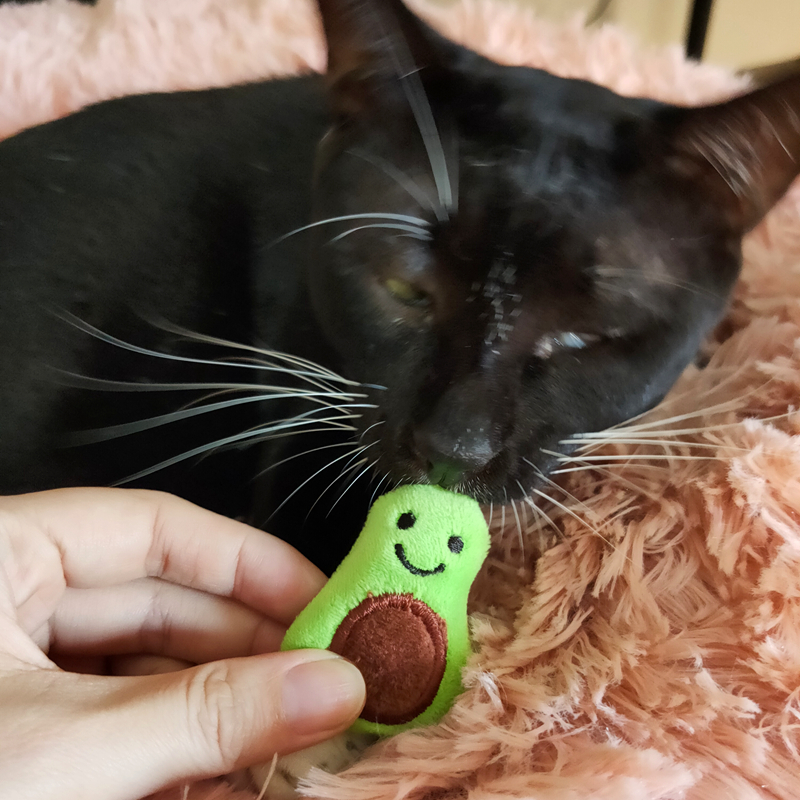 [MPK Catnip Toy] Buy any 3 items get 30% off! New 2019 Cat Face Design Cat Toy, Catnip Cookie Cat pillow 21