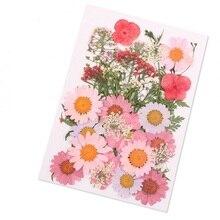Прессованный цветок смешанные органические натуральные сушеные цветы портативная Коллекция DIY Искусство Цветочные Декорации коллекция подарок P7Ding