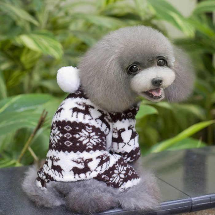 Ubrania dla psów jesień 2019 psy odzież dla zwierząt ubrania z kapturem ubranko dla psa koszulka zimowa ciepła bluza ropa para perro