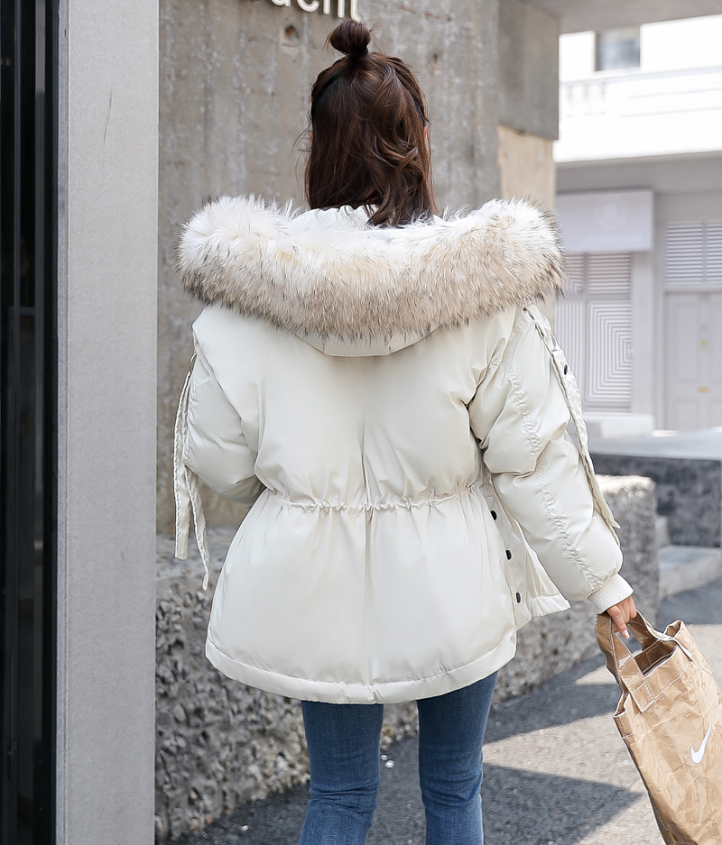 Korean Style 2019 Winter Jacket Women Cotton Padded Hooded With Fur Fe_B3_14