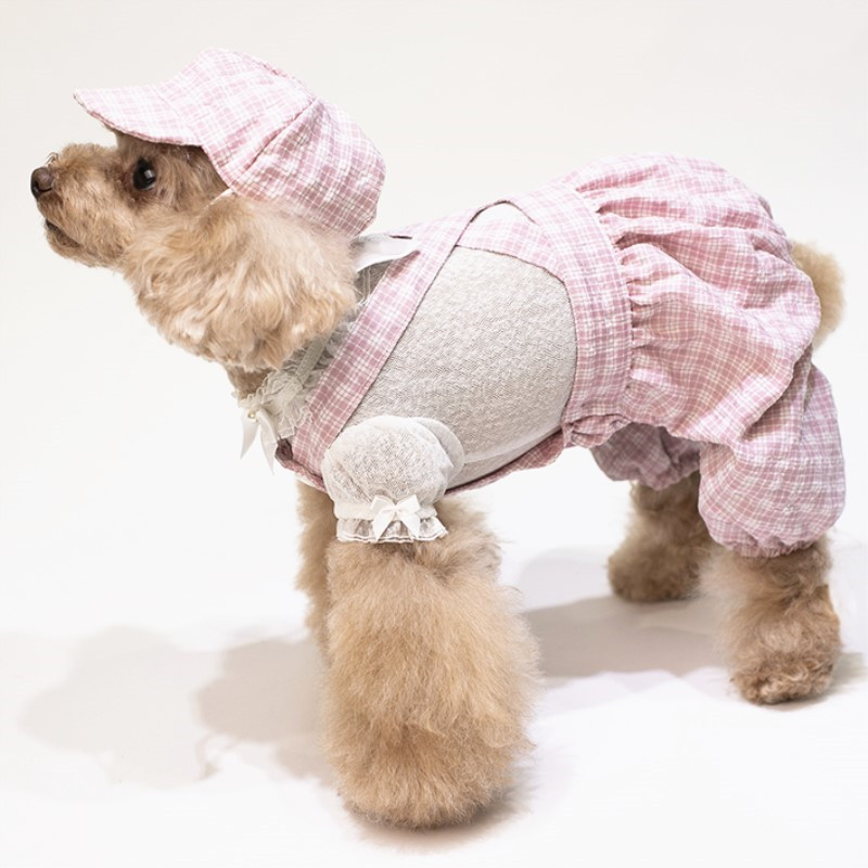 puppy jumpsuit set summer clothes dogs (1)