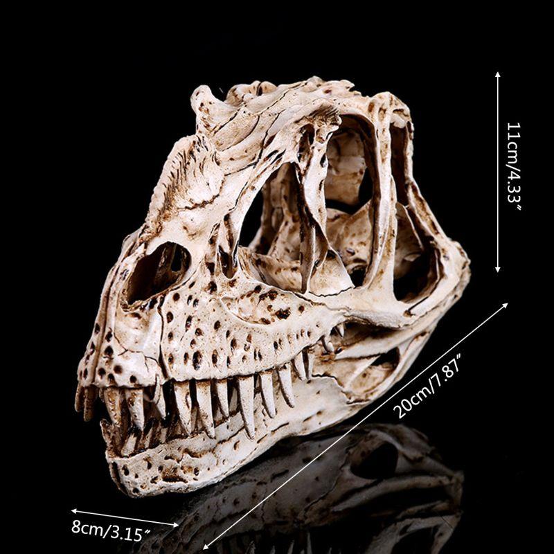 Ceratosaurus Dinosaur Skull Resin Crafts Fossil Skeleton Teaching Model Halloween Home Office Decoration