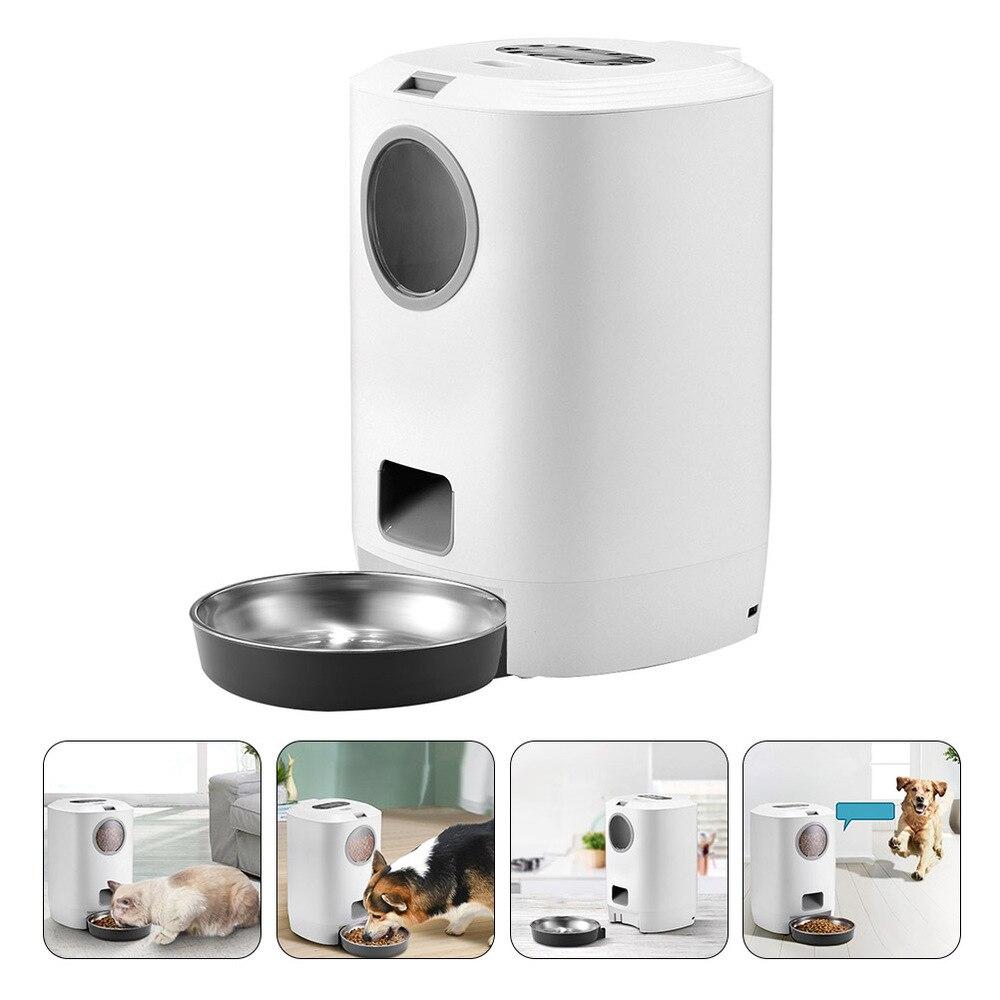Alimentatore automatico per alimenti per animali domestici contenitore per alimenti per gatti per cani alimentatore per alimenti per animali alimentatore per animali domestici alimentatore per animali domestici intelligente alimentatore per cani forniture per prodotti 1
