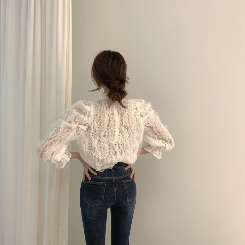 Hdb37b62ee262432a846fe79f9831e9e2t - Spring / Autumn Stand Collar Puff Sleeves Mesh Lace Crochet Flower Blouse