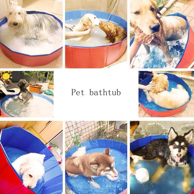 Foldable Padded Puppy Pool For Hot Summer Days  6