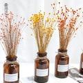 50 шт. настоящий счастливый цветок маленькие натуральные сухие цветы Букет сухие цветы пресс Мини Декоративные фотографии фон Декор
