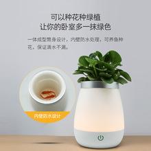 Lampa wazonowa LED jest używana w kawiarni barze dekoracja sypialni aby stworzyć atmosferę tanie tanio ROHS CN (pochodzenie) Łóżko pokój WHITE 6001 Brak 36 v Dotykowy włącznik wyłącznik Żarówki led Nowoczesne Shadeless