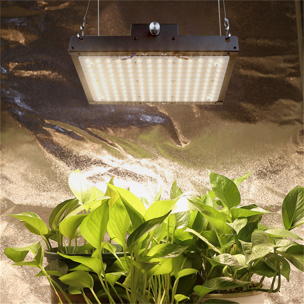LED Grow Light Dimmable Quantum Board Full Spectrum SAMSUNG LM301B 140W Plant Growing Lamp For Indoor Greenhouse Plants Growth