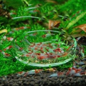 Transparent Aquarium Fish Tank Shrimp Food Feeding Circle Glass Feeder Floating Bottom Feeder Fish Shrimp