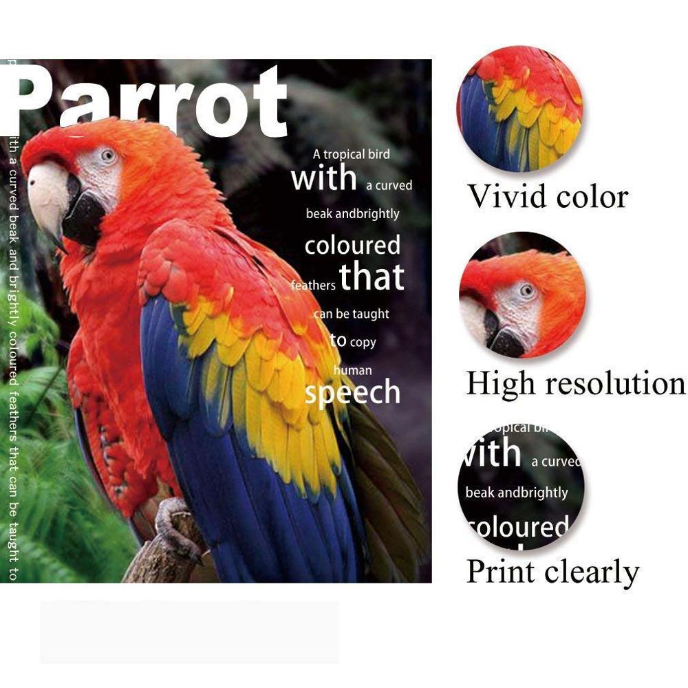 Image 4 - 고품질 100 a4 시트 잉크젯 프린터 용 양면 고광택 사진 광택 사진 흰색 카드 용지 코팅 용지사진 페이퍼사무실 & 학교 용품 -