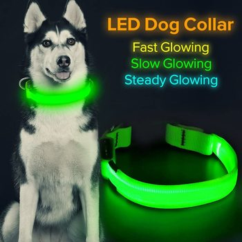 Glow In The Dark Dog & Cat Collar 1