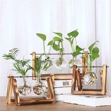 Креативные вазы для гидропонных растений прозрачная рамка настольные
