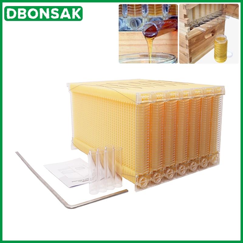 Cadre de nid pour ruche, Collection automatique de miel, pour ruche, en plastique de qualité alimentaire, bloc nid d'abeille, boîte de séparation des abeilles, outils pour apiculture