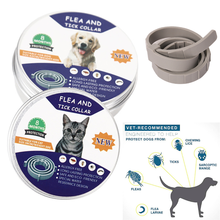 Adjustable Flea and Tick Collar for Dogs Cats Mosquito Repellent Collar for Pets over 8 months Free Shipping