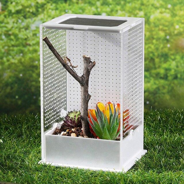 Reptile & Insect Feeding Terrarium  3