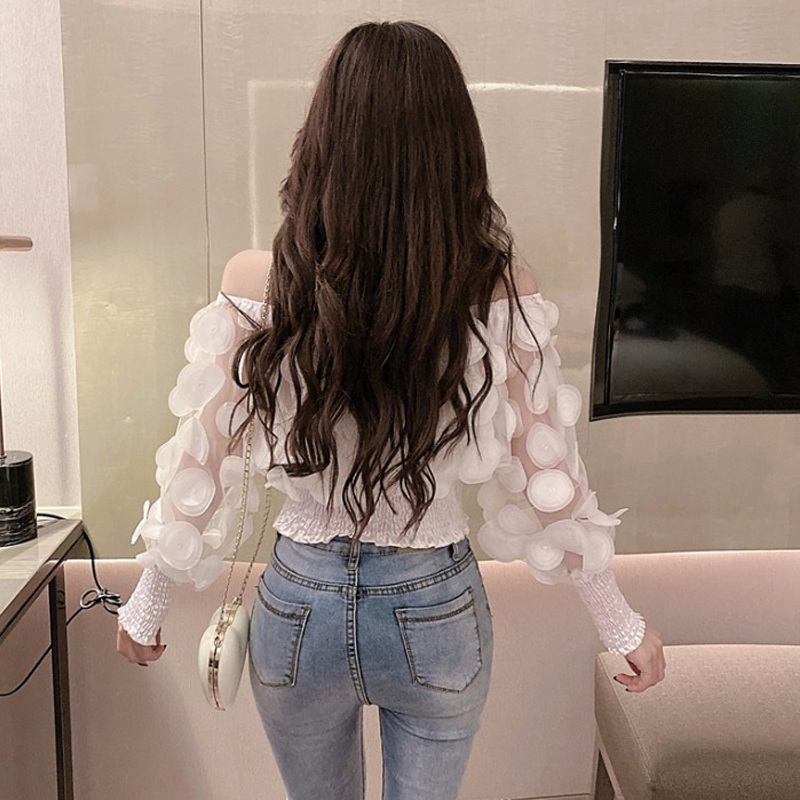Hdbc511bdd22348e8acb91a53f8145214P - Sexy Off Shoulder womens tops and blouses Mesh Sheer Puff Sleeve Tops Summer 3D Flower Vintage White Women Shirt Blouse