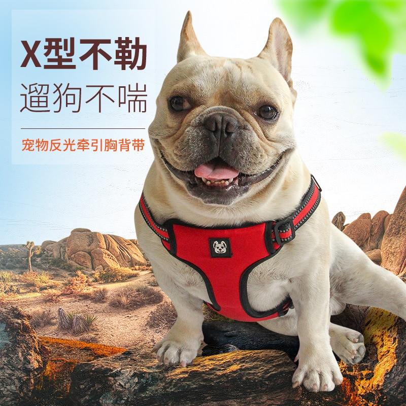 Dog Chain Dog Small Lanyard Neck Ring Medium Traction Dog Dog Large Unscalable Golden Retriever Walking Dog Pet
