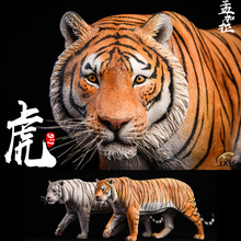 Collectible 1/6 Animal Model Yellow/White Bengal Tiger Animal Statue Model Figure Scene Accessories for 12'' Action Figure