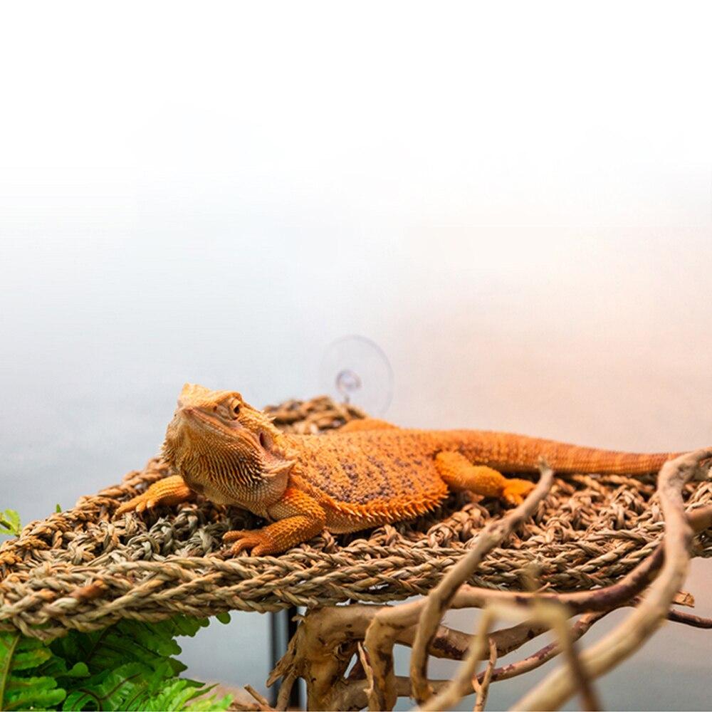 Decoração de habitat