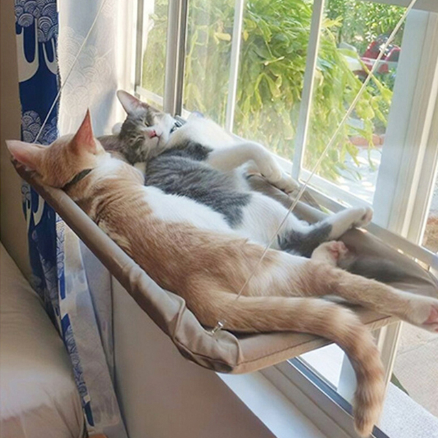 New product Hanging Kitten Hammock  4