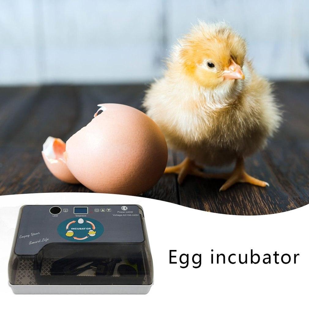 Hot cheap Price 12 Digital Egg Incubator 12 Eggs Automatic Hatcher With Eggtester Automatic Egg Turning Farm Hatchery Machine