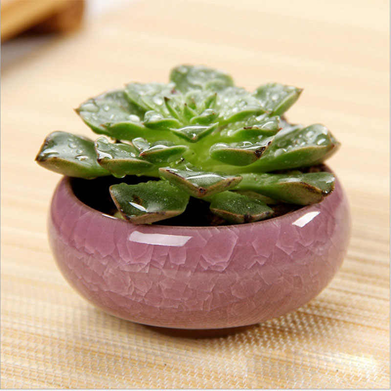 Rotonda Vasi da Fiori In Ceramica Per Juicy Impianti Mini Bonsai Planter Garden Home Decor Piccolo Succulente Vaso da Fiori del Commercio All'ingrosso 6*6*2.5 centimetri