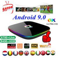 Q Plus Smart TV Box avec 1 an IPTV Code d'abonnement 6K Full HD 3D lecteur multimédia Europe IPTV Android 9.0 décodeur Abonnement