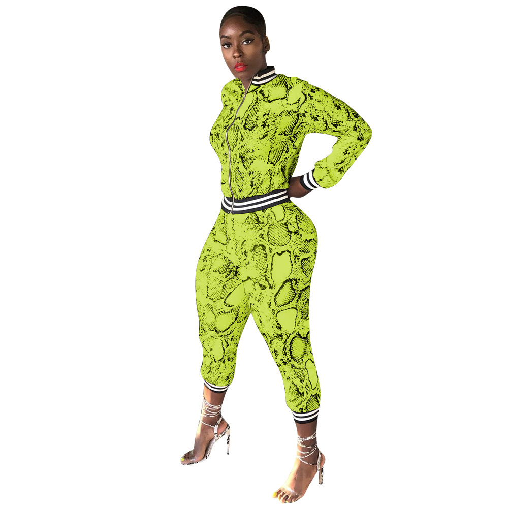 Adogirl Snakeskin Print Women Tracksuit 2020 Spring Fashion Casual Two Piece Set