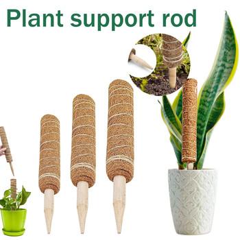 Najlepiej sprzedające się wsparcie dla roślin Moss Pole Pole Moss StickPlant wsparcie Moss Pole Pole Moss Stick dla rośliny pnące wsparcie rozszerzenie tanie i dobre opinie CN (pochodzenie)