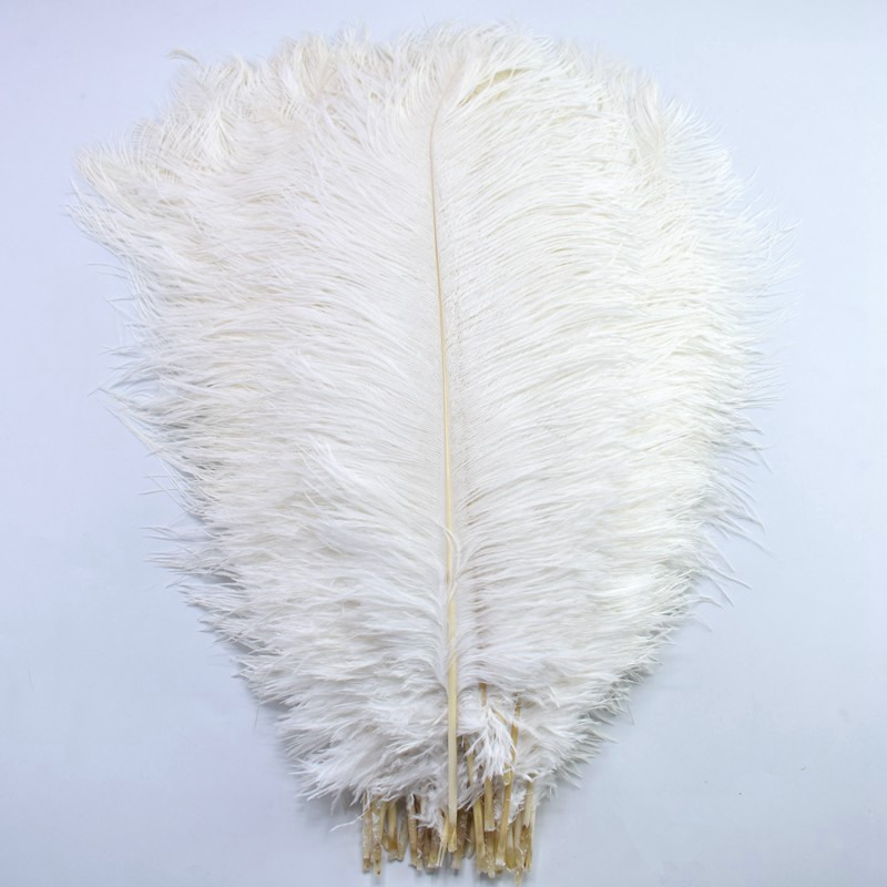 Commercio all'ingrosso 15-70CM piume di struzzo bianco Naturale FAI DA TE grandi piume di struzzo del partito piume di Nozze per artigianato Decorazioni