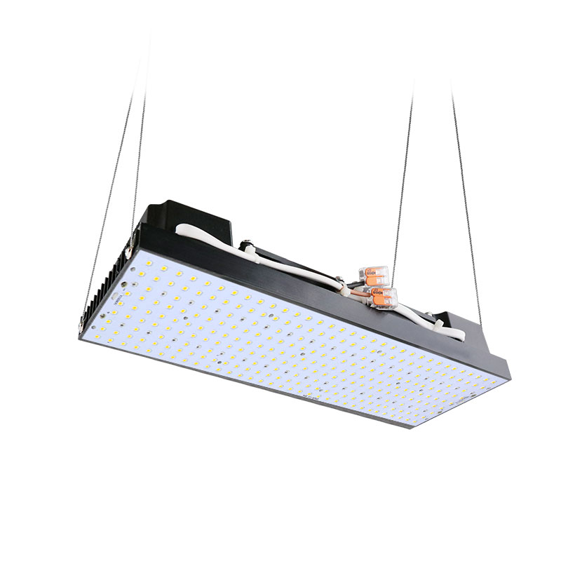 Led Full Spectrum 100w CREE CXB3590 Cob Led Grow Light DIY Module Full Spectrum LED Grow Lamp Indoor Grow Room Ideal Holder