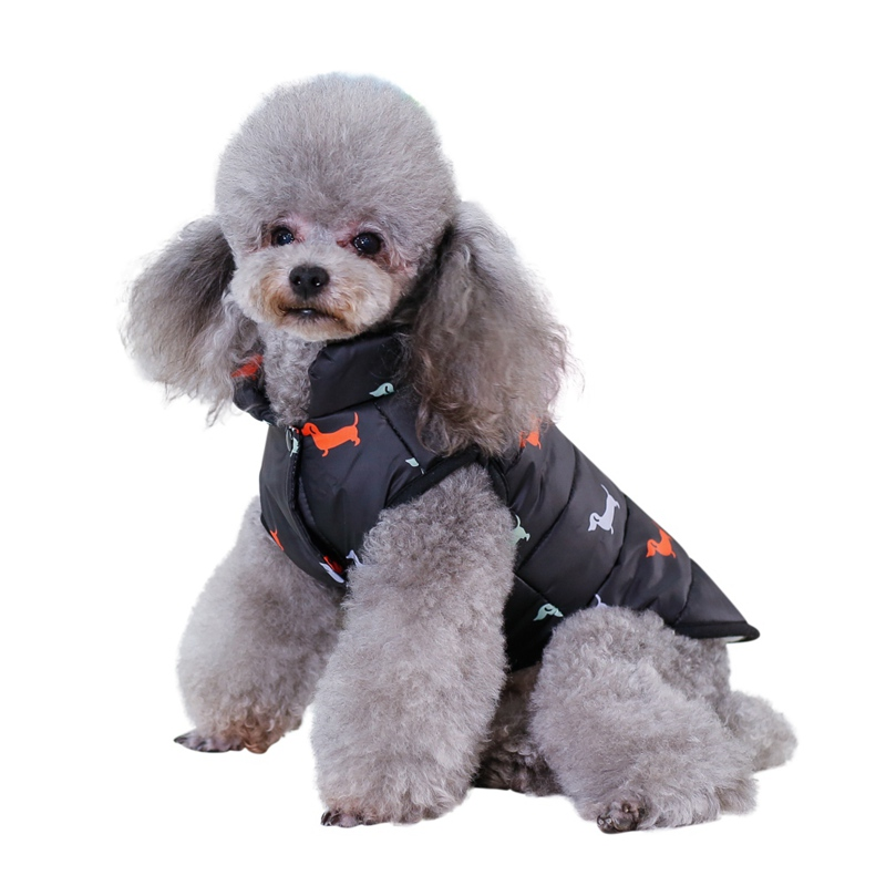 Waterproof Dog Jacket Made with Polyester Cotton and Fleece Material for Autumn and Winter 5